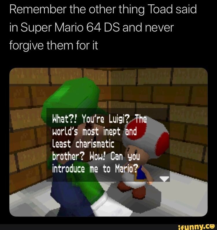 Remember The Other Thing Toad Said In Super Mario 64 Ds And
