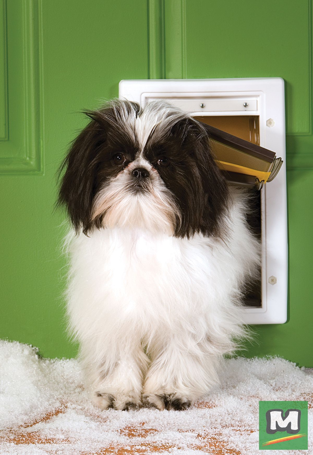 The Extreme Weather Pet Door From Petsafe Is The Perfect Pet