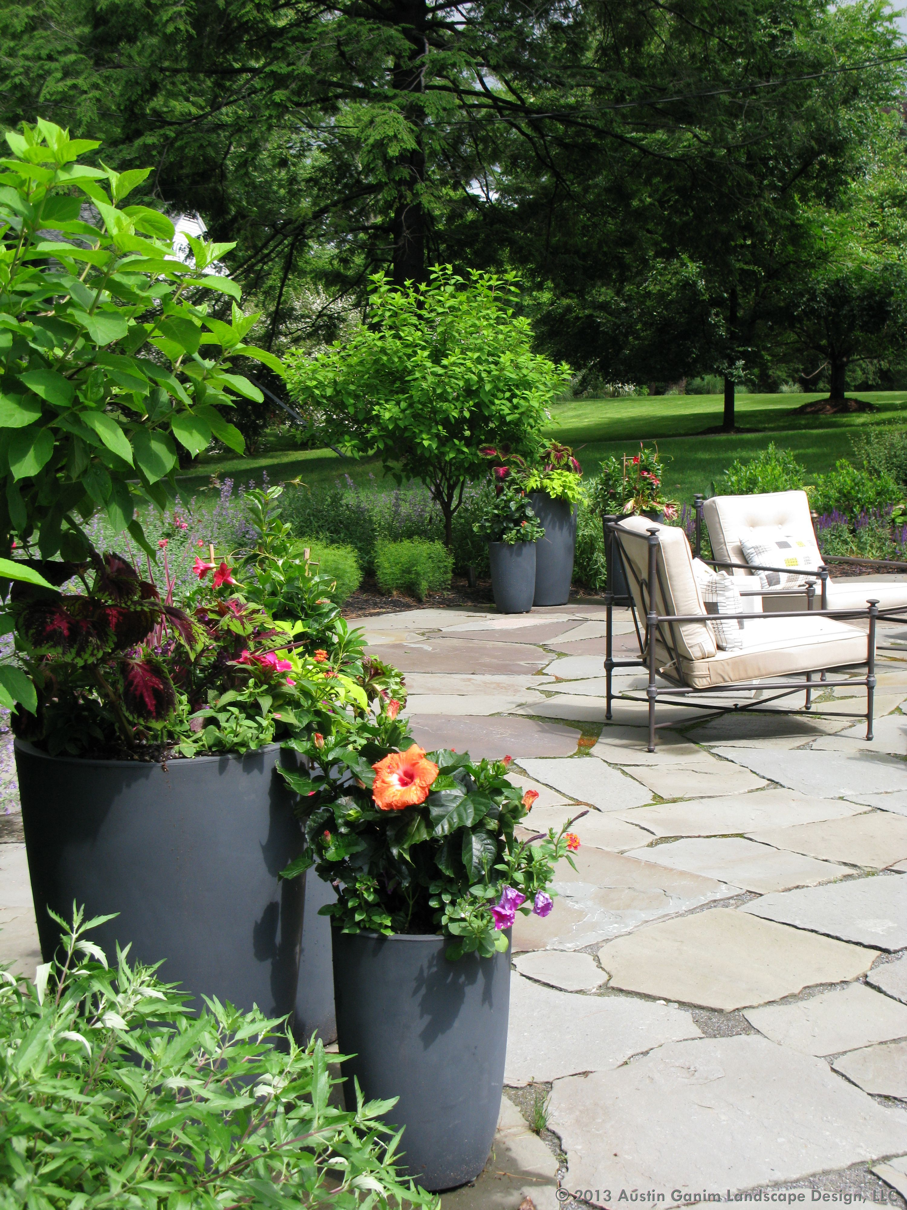 Austin Ganim Landscape Design Llc These Groupings Of