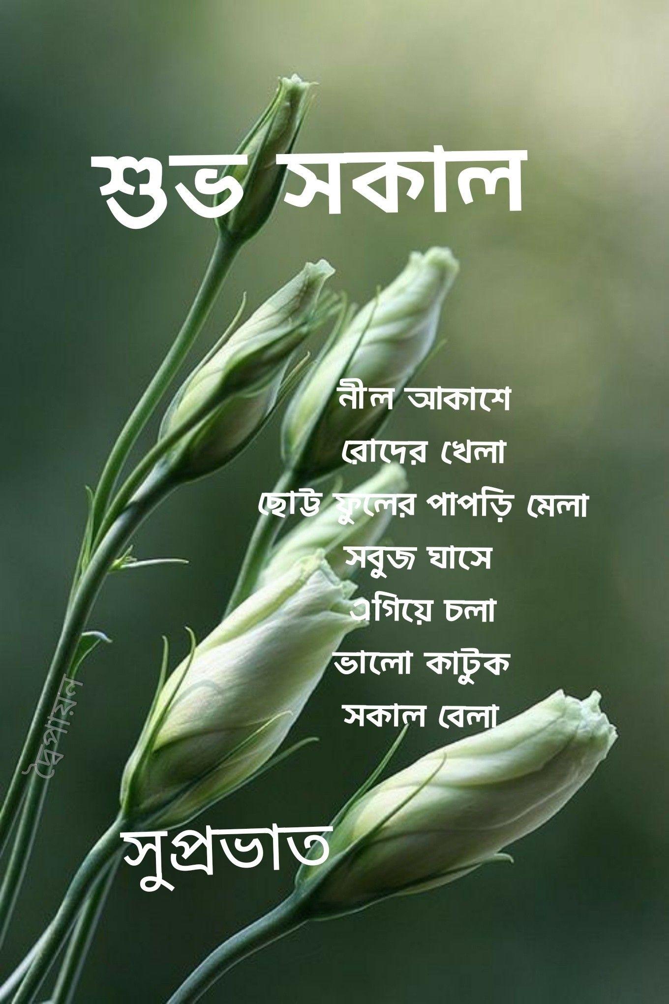 Suprbat   Good morning inspirational quotes, Good morning ...