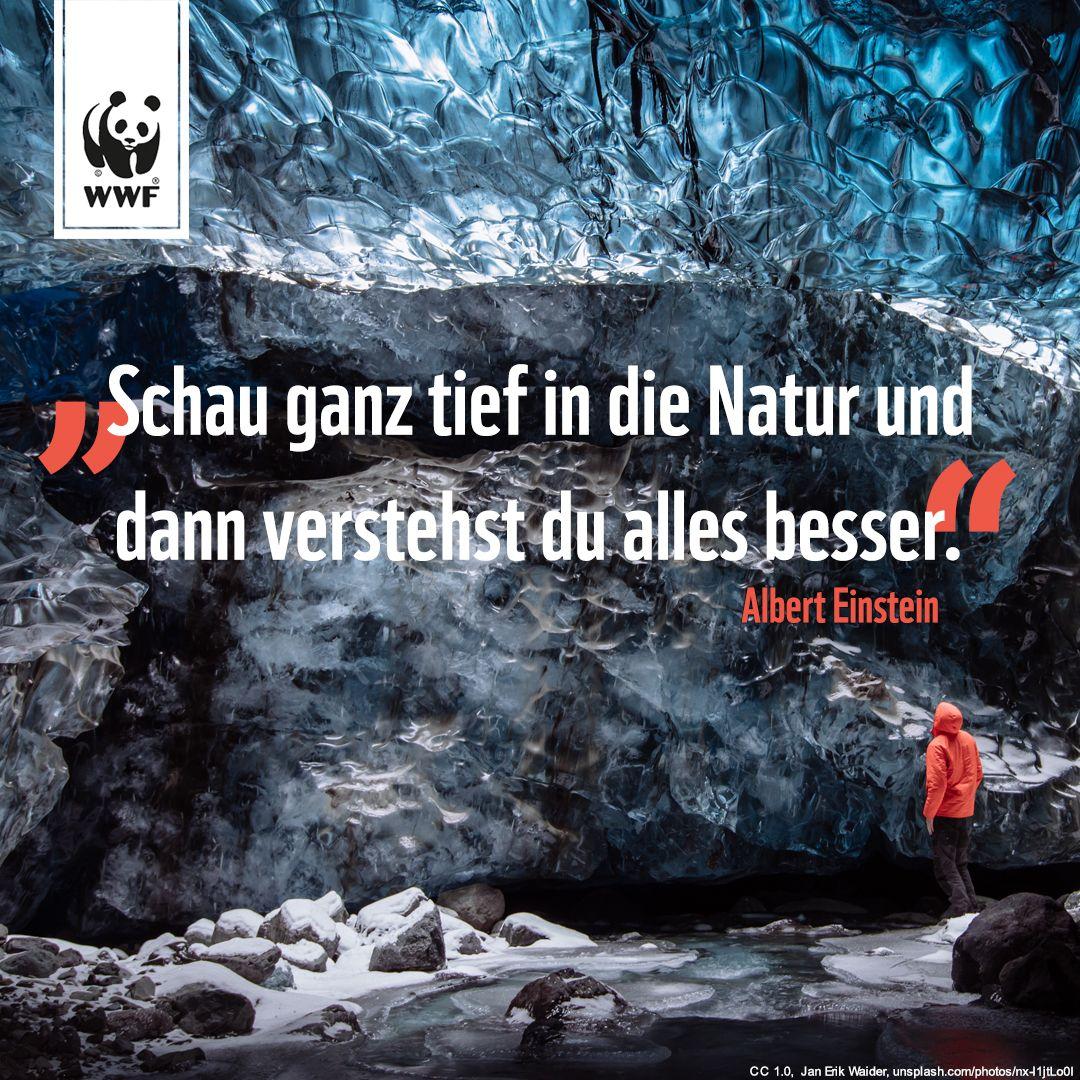 Zitat Zum Sonntag Dichter Und Denker Natur Gedichte Und Spruche