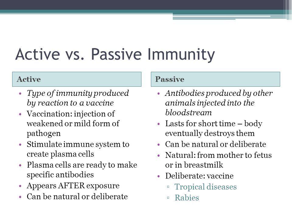 Active v passive immunity | Biomed: Exam 2 | Pinterest