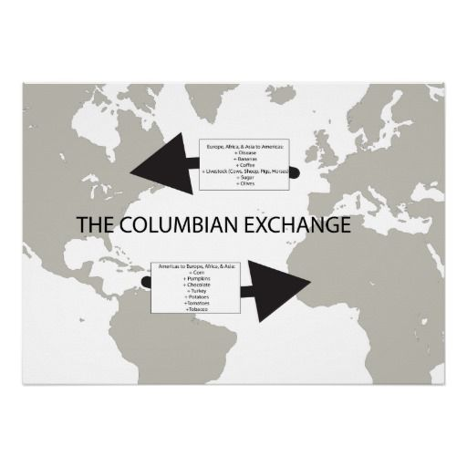 The Columbian Exchange Poster Social Studies Products And Posters