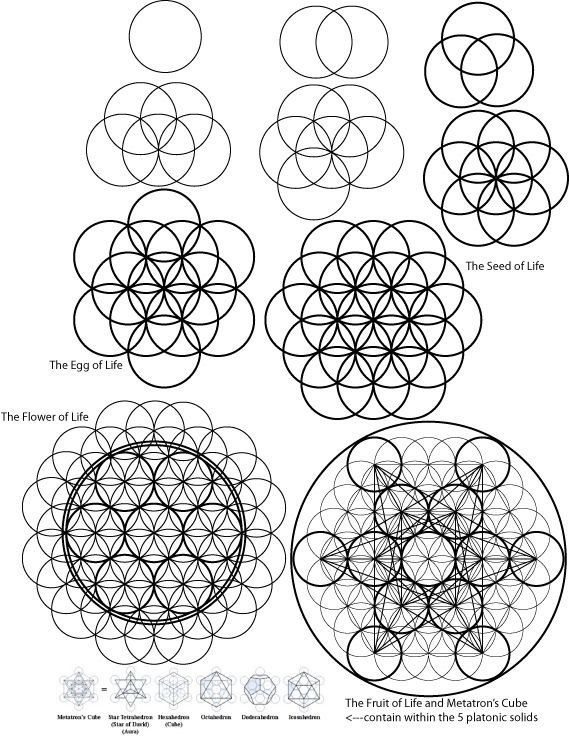 A visual description of how to draw the Flower of Life and beyond ...