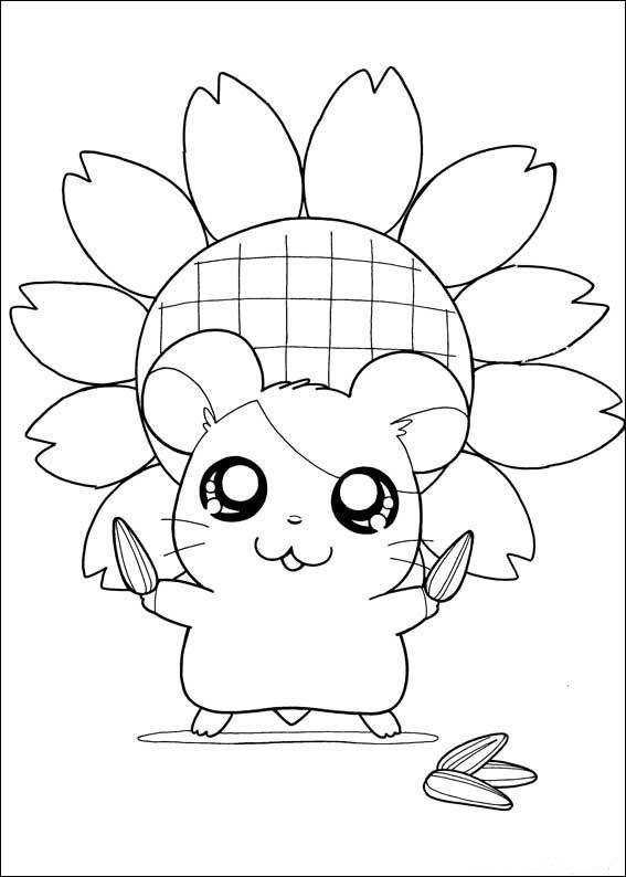 Dibujos Para Colorear Hamtaro 12 Dibujos Bonitos Para Colorear Dibujos Hamtaro