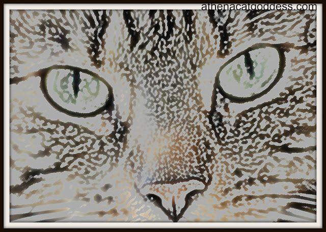 #CaturdayArt Blog Hop #caturday