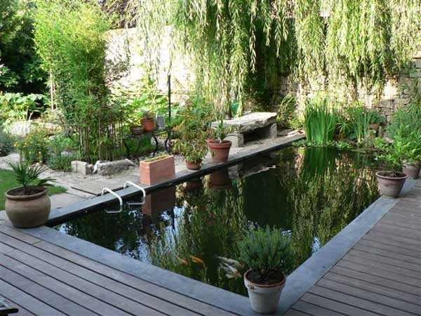 Passion bassin les exemples de r alisation de bassins for Bassins de jardin photos