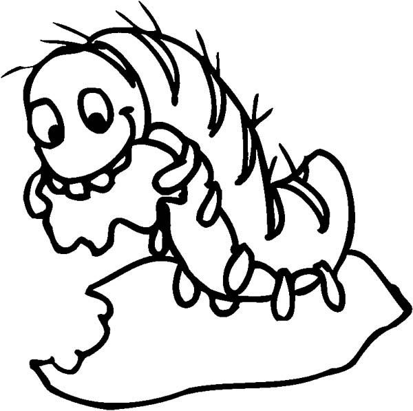 Hungry Caterpillar Coloring Sheets For Kids   Coloring ...