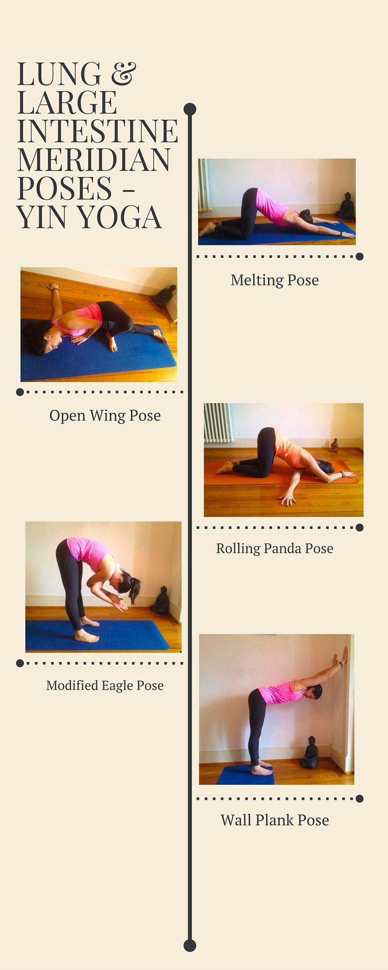 Yin Yoga Large Intestine Meridian Poses Myoga Studio Lausanne Yin Yoga Poses Yin Yoga Sequence Yin Yoga