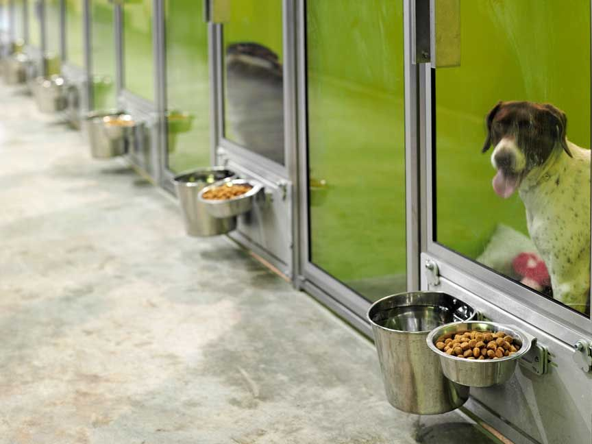 T-Kennel: Modular Kennel Systems -- Love The Rotating