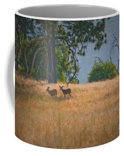 Summer Deer In The Meadow Coffee Mug for Sale by K D Graves Summer Deer In The Meadow Coffee Mug for Sale by K D Graves