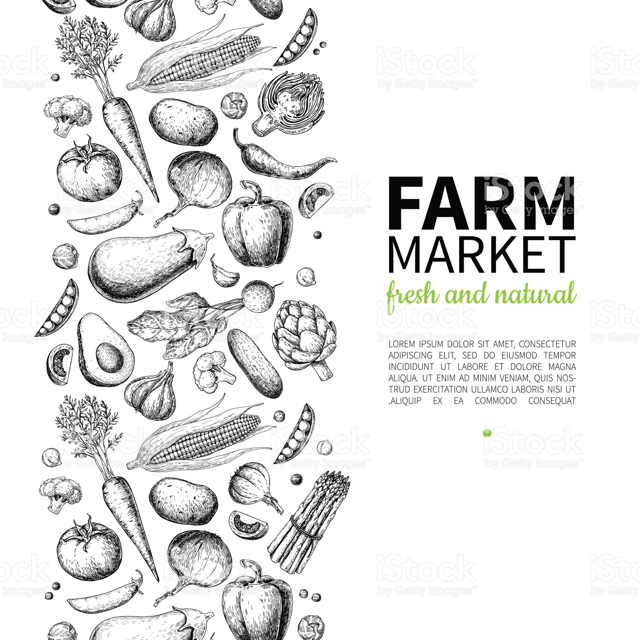Vegetable Hand Drawn Vintage Vector Illustration Farm Market Poster How To Draw Hands Vector Illustration Farm Logo
