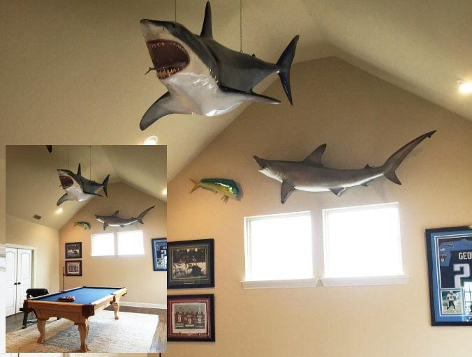 Mako Shark Mount   Sirena Game Room in 2019   Ocean bathroom