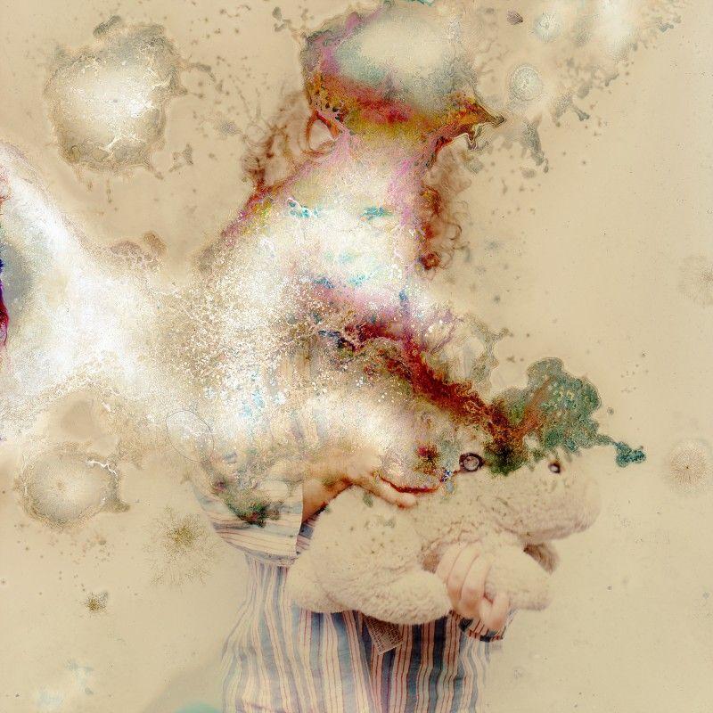 Des photos dévorées par les champignons photo champignon microbe 03 800x800
