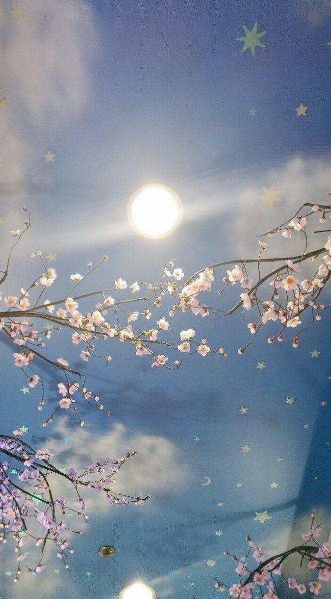 Oct 09, 2021· beautiful flowers, pastel, cute and more. الصورة المضمنة   Photography wallpaper, Scenery wallpaper ...