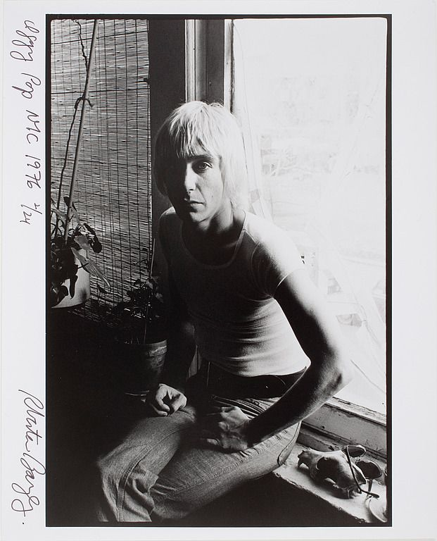 Iggy Pop photographed by Roberta Bayley, New York City, 1976 | Iggy pop, Iggy  and the stooges, The stooges