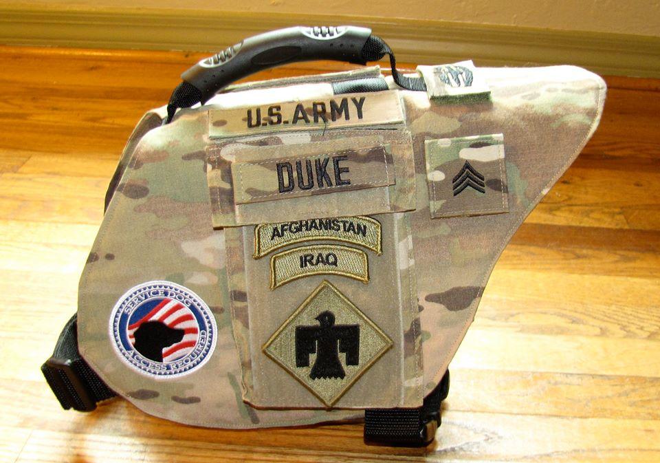 veteran service dog vests