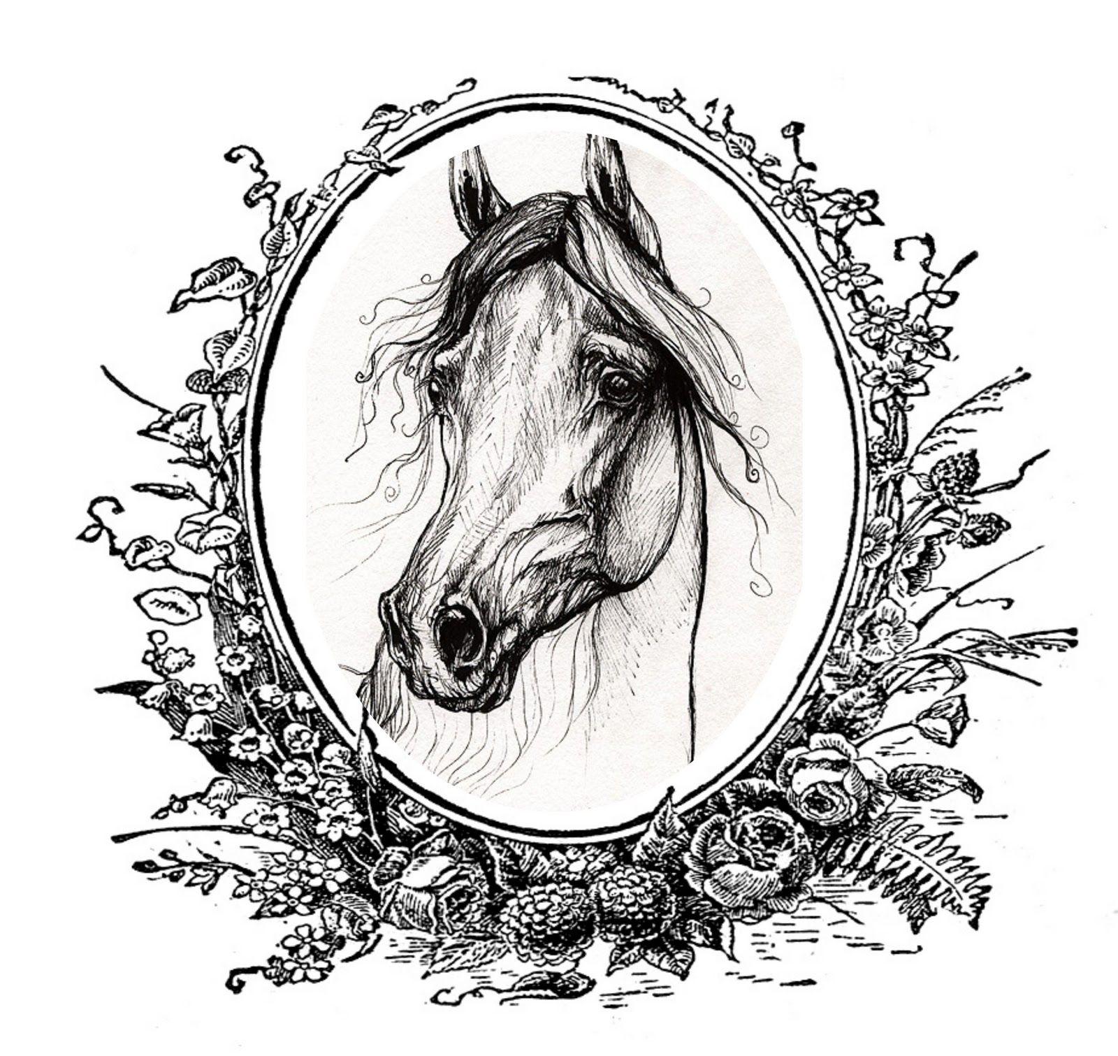 лошади на зеркале картинки появлением