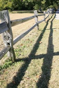 How Much Does a Split Rail Fence Cost | Split rail fence