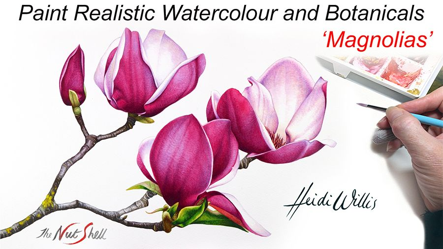 Magnolias Paint Realistic Watercolor And Botanicals Watercolor Flowers Tutorial Watercolor Paintings Tutorials Painting Tutorial
