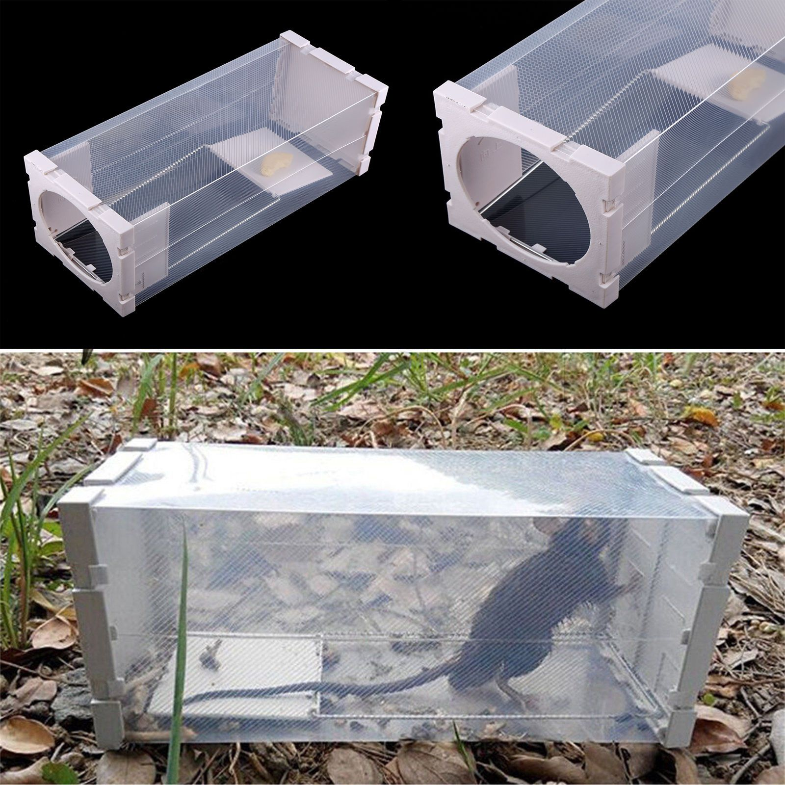Humane Rat Trap Cage Live Animal Pest Rodent Mice Mouse Control Bait Catch New