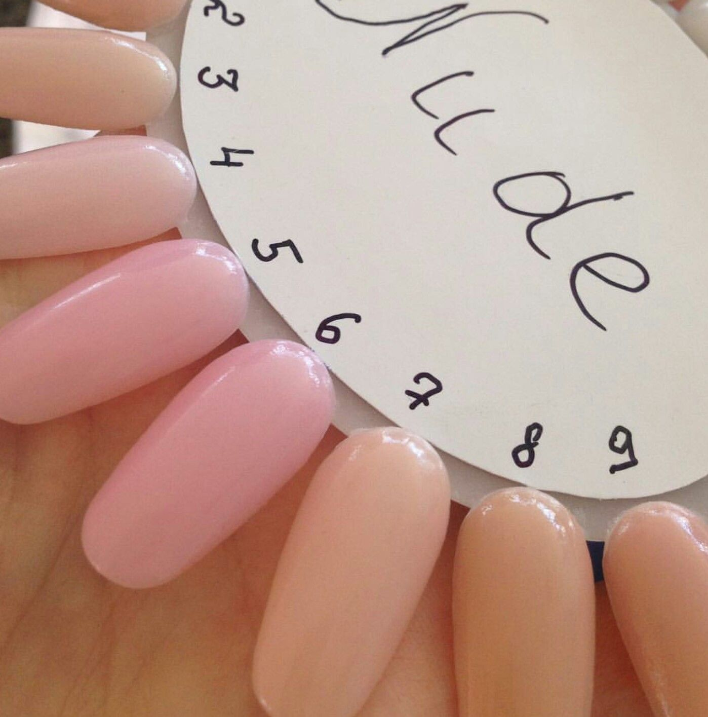 I\'m *pretty* sure these are the SNS nudes | Dip Nails Color Swatches ...