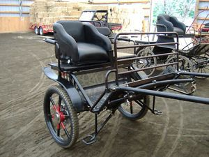 voiture cheval Granby Québec image 1