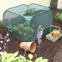 Pop Up Net Cover Gpn100 02 Ha Whole New Meaning To Plant Nursery