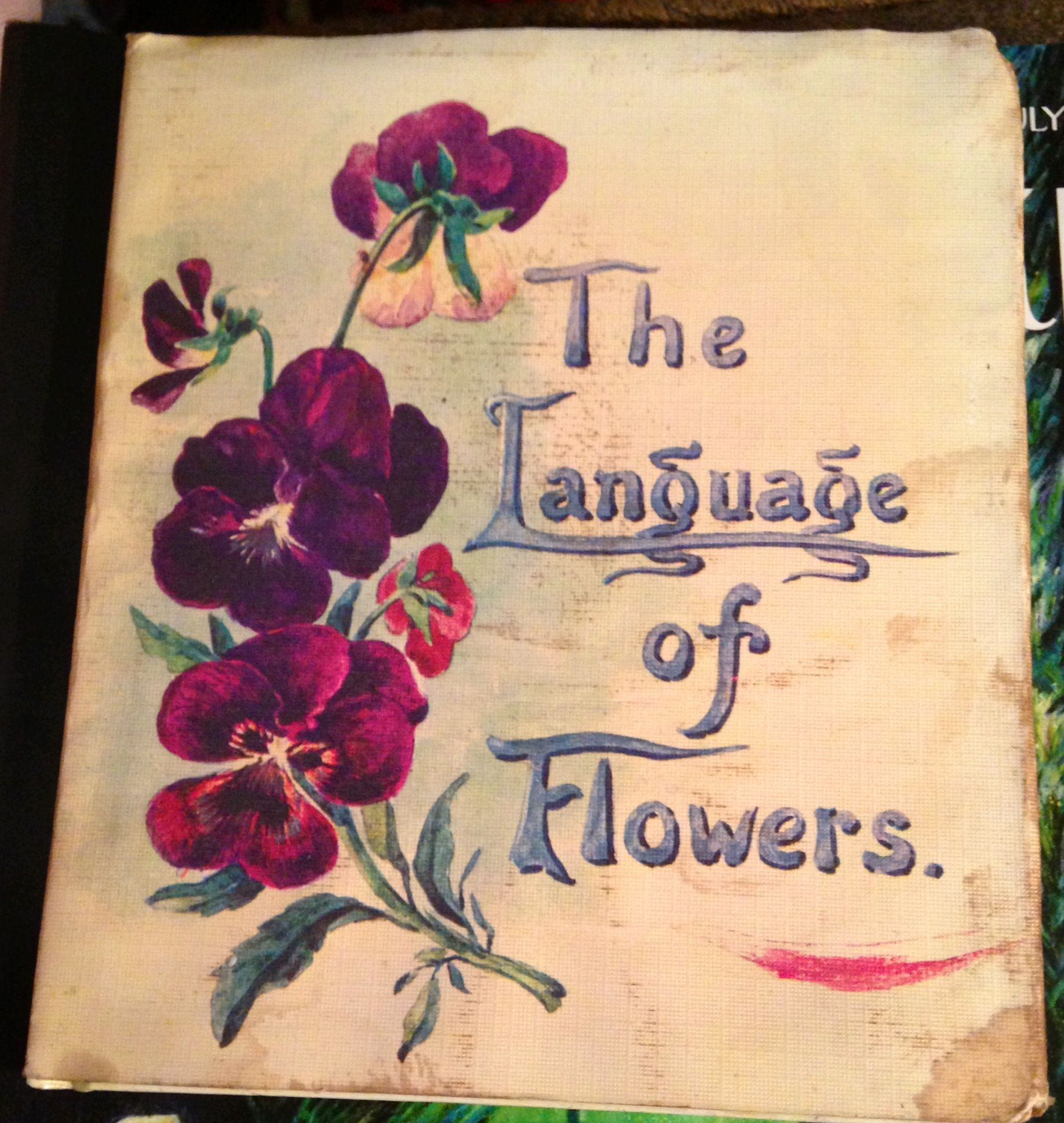 One Of Many Versions Book Of Flowers And Their Meanings Book Art Flower Meanings Language Of Flowers