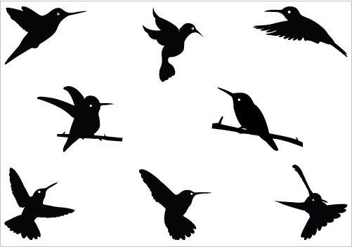 hummingbird silhouette vector download bird vectors silhouette