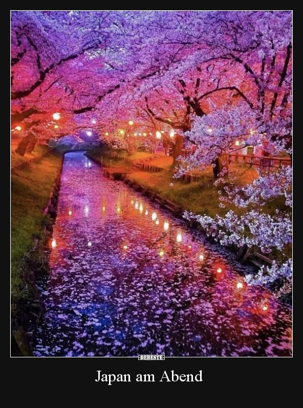 Photo of Japan in the evening .. | Funny pictures, sayings, jokes, really funny