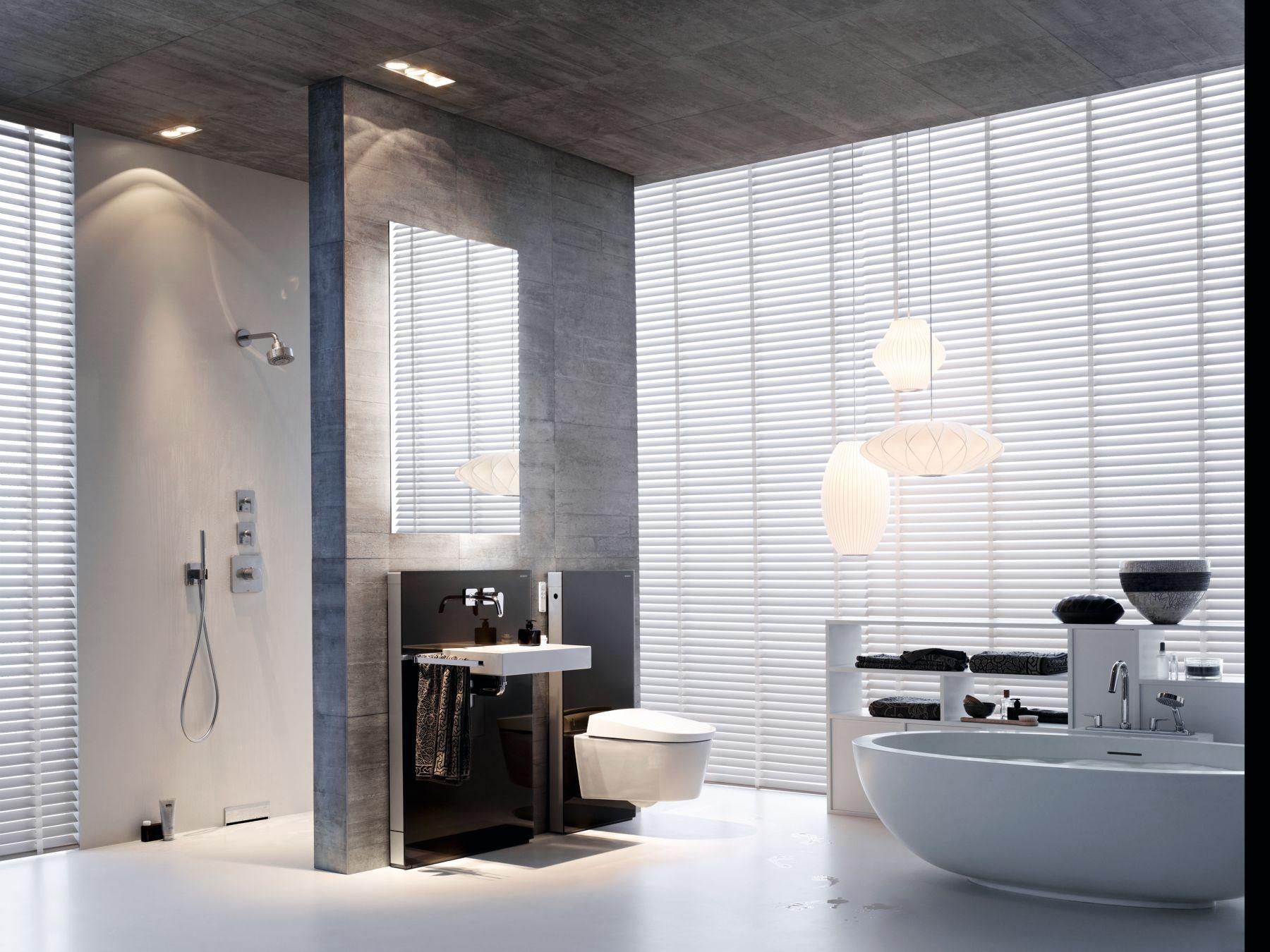 badkamerinsporatie met geberit monolith wc en wastafel element