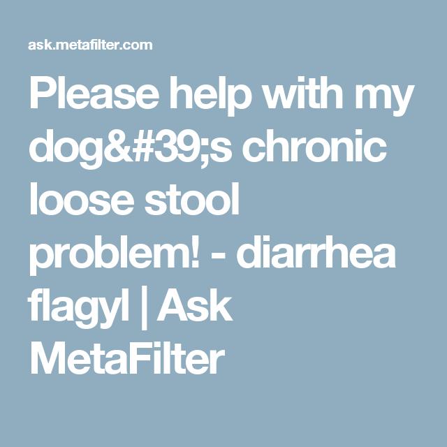 Please Help With My Dog S Chronic Loose Stool Problem Soft Stool Chronic Problem