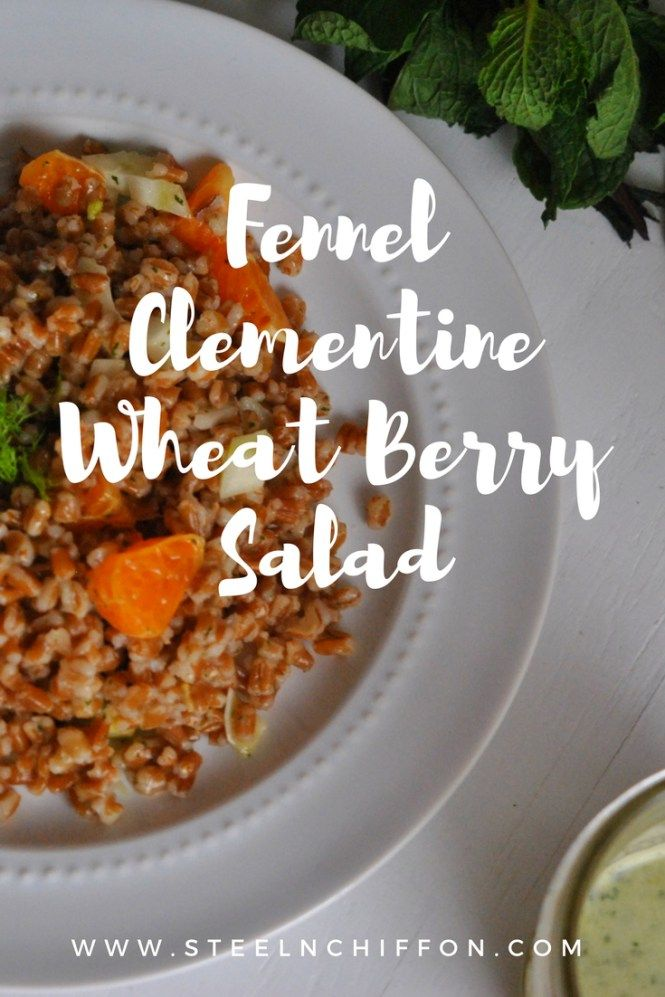 Fennel Clementine Wheat Berry Salad - SteelNChiffon