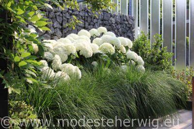 Annabel en siergras inspiring ideas for the backside of for Moderne beetbepflanzung