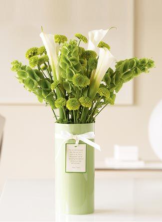 Beautiful Bells Of Ireland Perfect For Dried Arrangements 50 Seeds Ireland Wedding Irish Wedding Wholesale Flowers
