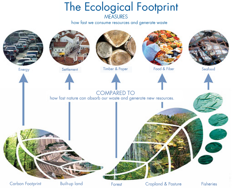 Ecological Footprint Earth Overshoot Day And The Happy Planet Index Otpechatki Stop