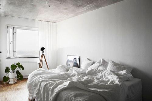 Interior home decor + minimal