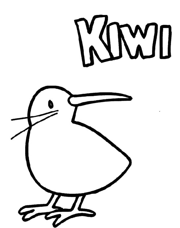 Baby Kiwi Bird Coloring Pages Download Print Online Coloring Pages For Free Color Nimbus Bird Coloring Pages Online Coloring Pages Coloring Pages