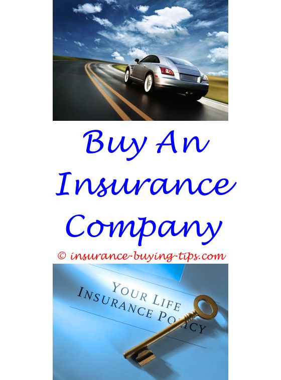 Geico Insurance Quote Glamorous Is It Necessary To Buy Travel Insurance  Best Buy Insurance In .