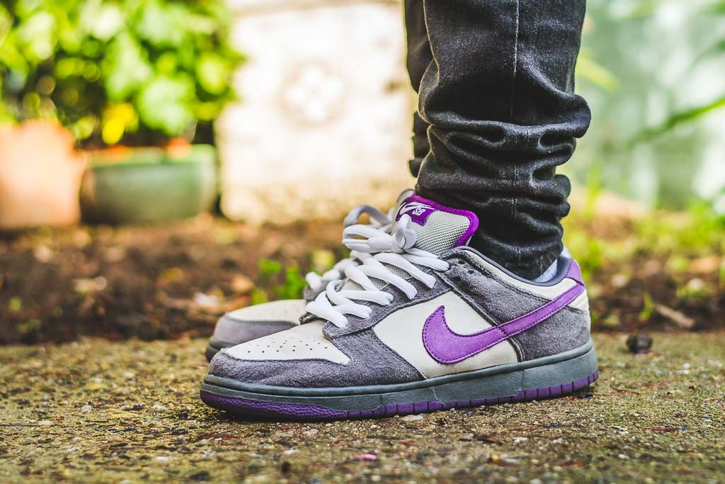 Nike Dunk SB Low Purple Pigeon On Foot