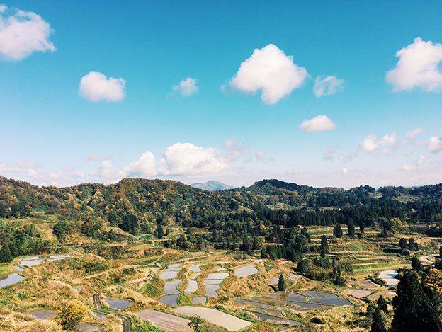 未来をひらく、協働の夢(北川フラム) ポリタス 戦後70年――私からあなたへ、これからの日本へ