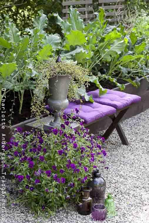 Garden Flow Kitchen Garden Edible Garden Design Terrazzo