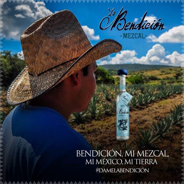 #Santiago #Matatlan #Oaxaca #Mexico #Comercam #NOM #CRM #denominacióndeorigen #mezcal #agave #espadin #mezvalartesanal