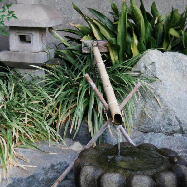 James Irvine Japanese Garden | Jenny S.W. Lee Photography and Videos ...