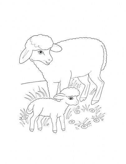 Free Coloring Pages Of Baby Birds In Nest Sheep Mother And Lamb