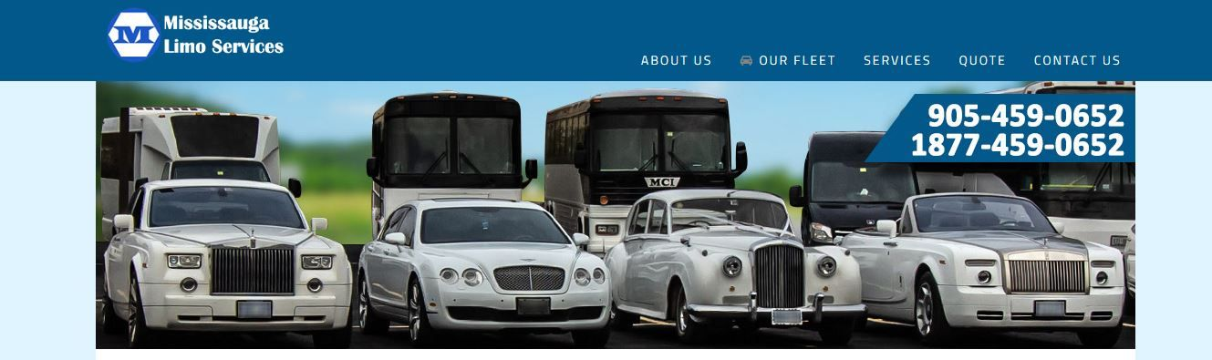 Mississauga limo party bus rental party bus limo party