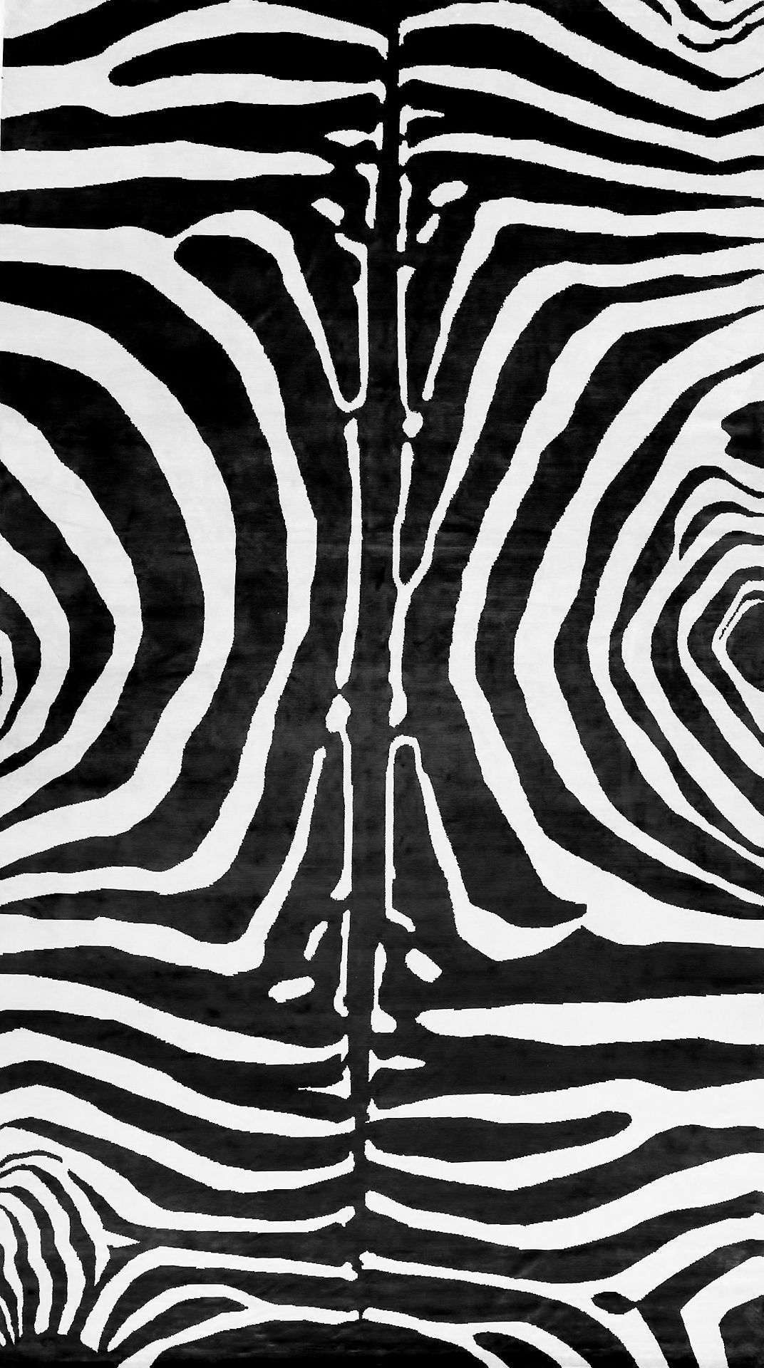 Black White Zebra Pattern Monochrome Print Design Kartiny