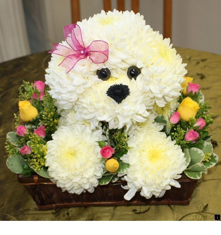 >>Read information on florist  Click the link for more info~~ The web presence is worth checking out  is part of Animal flower arrangements -