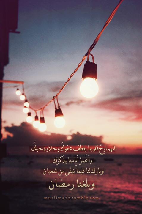 Pin By Salma Ahmed On رمضان كم أهواك يا شهر الصيام 3 3 Ceiling Lights Track Lighting Light Bulb